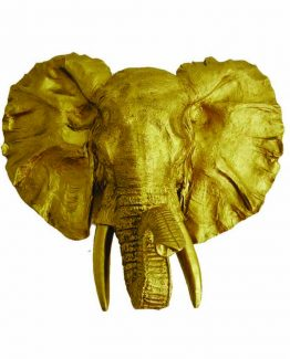 negro gallo-elefante-gold-casa creative